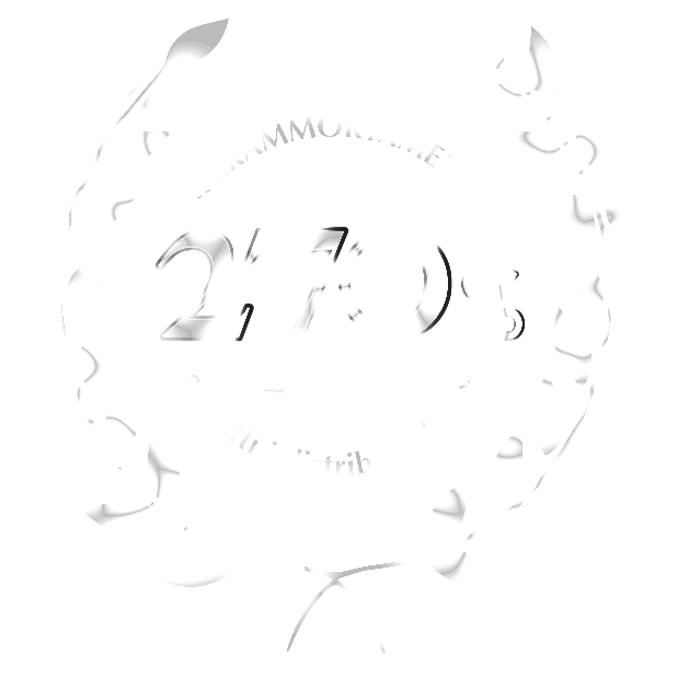 Logo Iperammortamento del 270 % Bianco